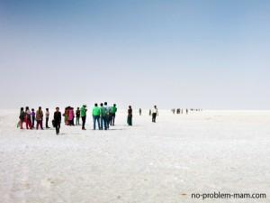 """Le désert de sel """"Rann of Kutch"""""""