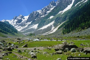 Sonmarg cache mire