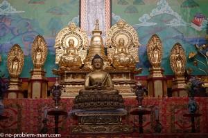 shanti-stupa7