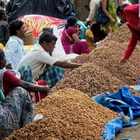 -62170005200_kadalekai-parishe-annual-groundnut-festival-will-be-held-karthika-masa-month-hindu-calendar